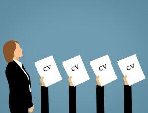 Wykształcenie CV